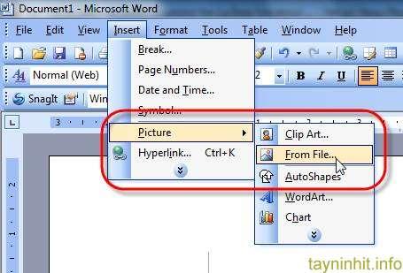 Với Office 2007, 2010, 2013 Nhấp Insert Tại Ribbon, Chọn Tiếp Picture.